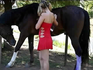 Young brunette gets off on horse licking